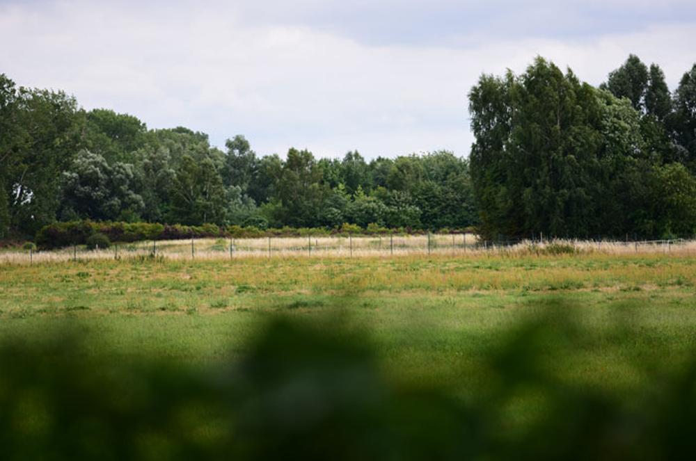 Blick über das Feld